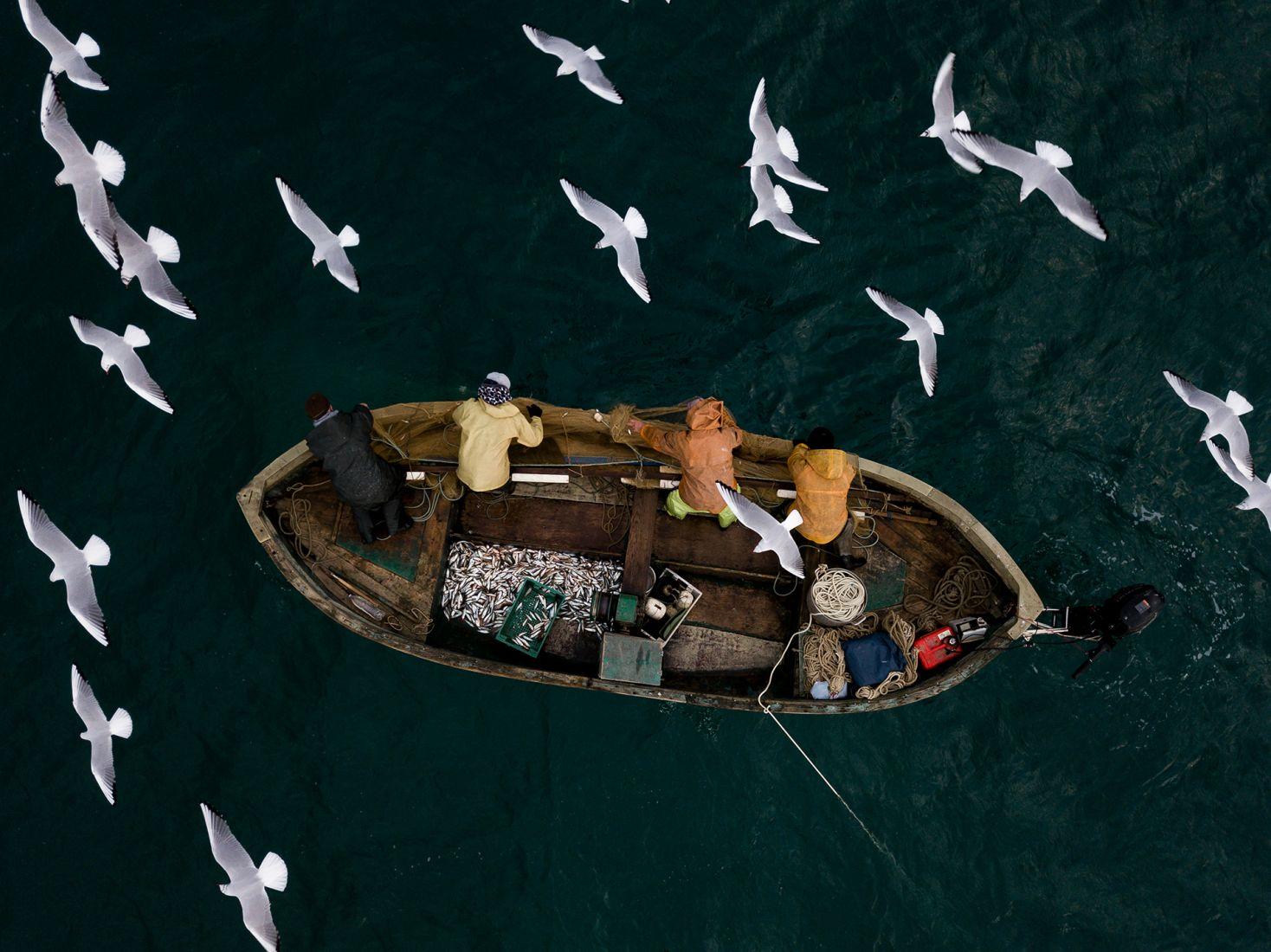 Морская рыбалка, © Алексей Мальгавко, Финалист фотоконкурса «Самая красивая страна – 2018»