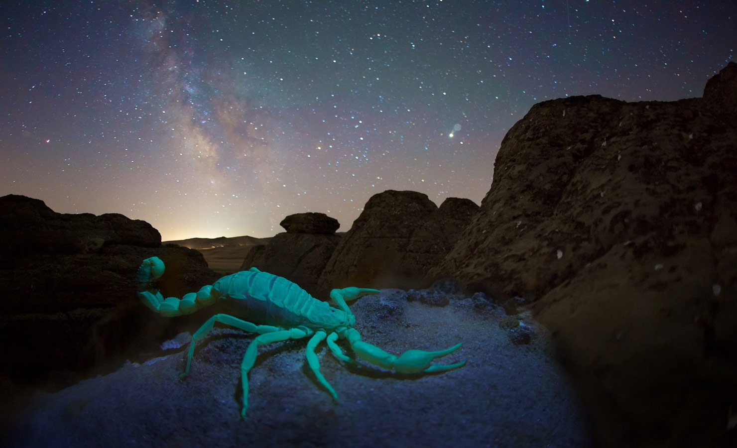 В созвездии стрельца и скорпиона, © Егор Никифоров
