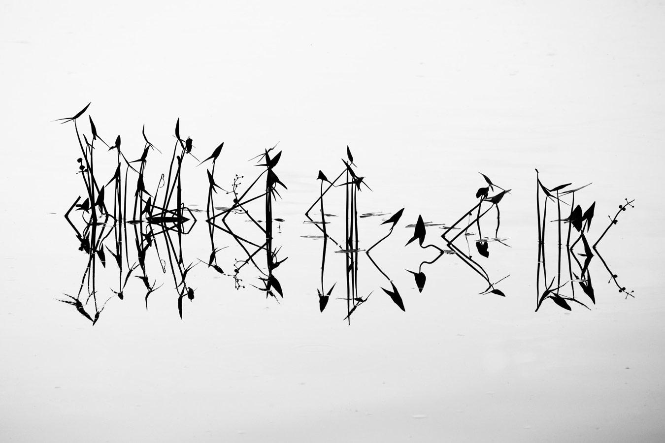 Письмена природы, © Евгений Андреев