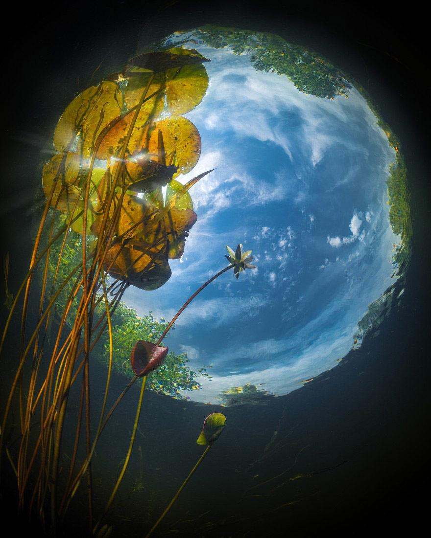 Небо в речном круговороте, © Олег Воротников