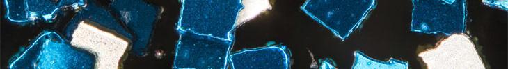 Фотоконкурс «Научный фотограф года»