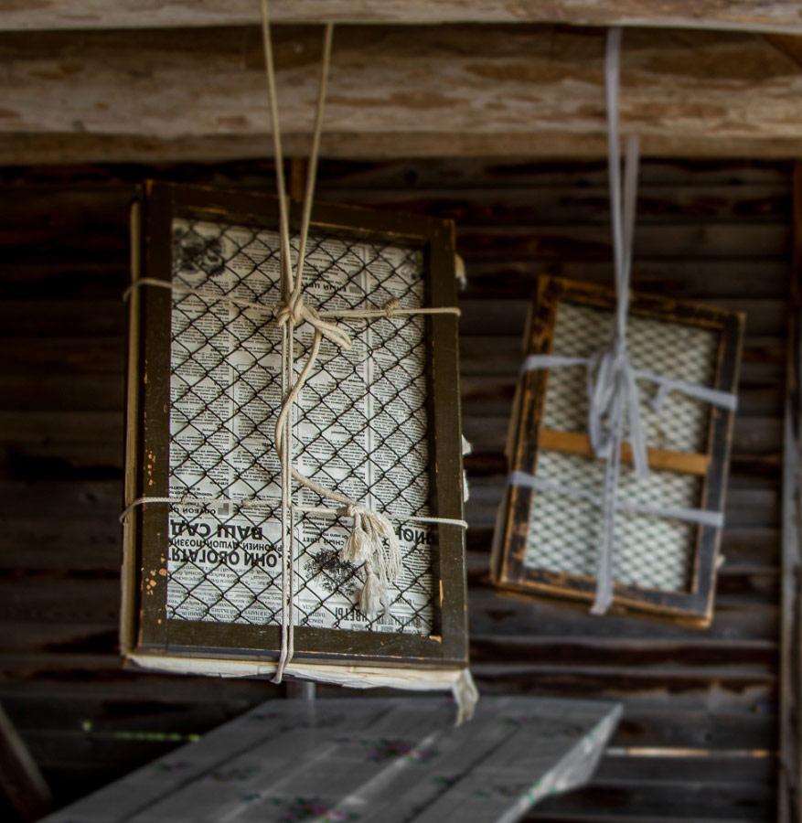 Просушка гербария, © Евгений Табалыкин, Фотоконкурс «Стихии науки»