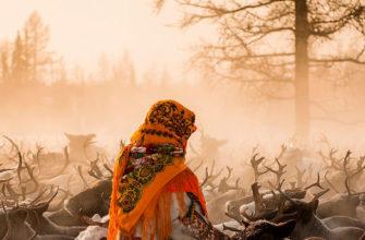 Фотоконкурс «Северяне»