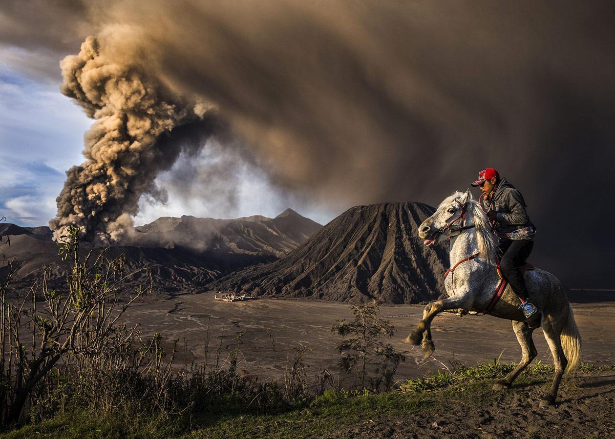 На страже, © Рикса Девантара, Индонезия, 2 место, Фотоконкурс Siena