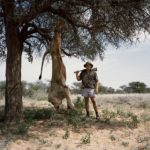 Трофейная охота - должны ли мы убивать животных, чтобы сохранить их?, © Дэвид Канцлер (Великобритания), 1 место, Фотоконкурс Siena