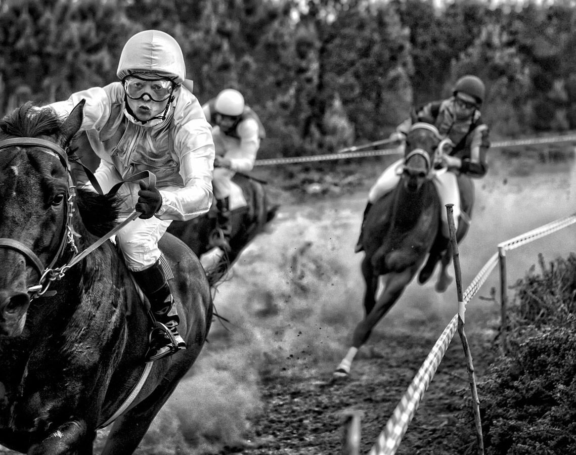 Лошадь победителя, © Адольфо Энрикес Кало, Испания, 2 место, Фотоконкурс Siena