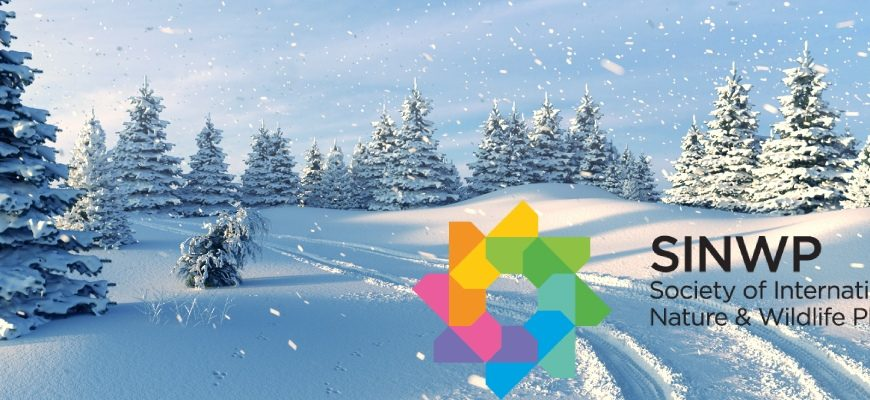 Конкурс фотографий «Зимний пейзаж»