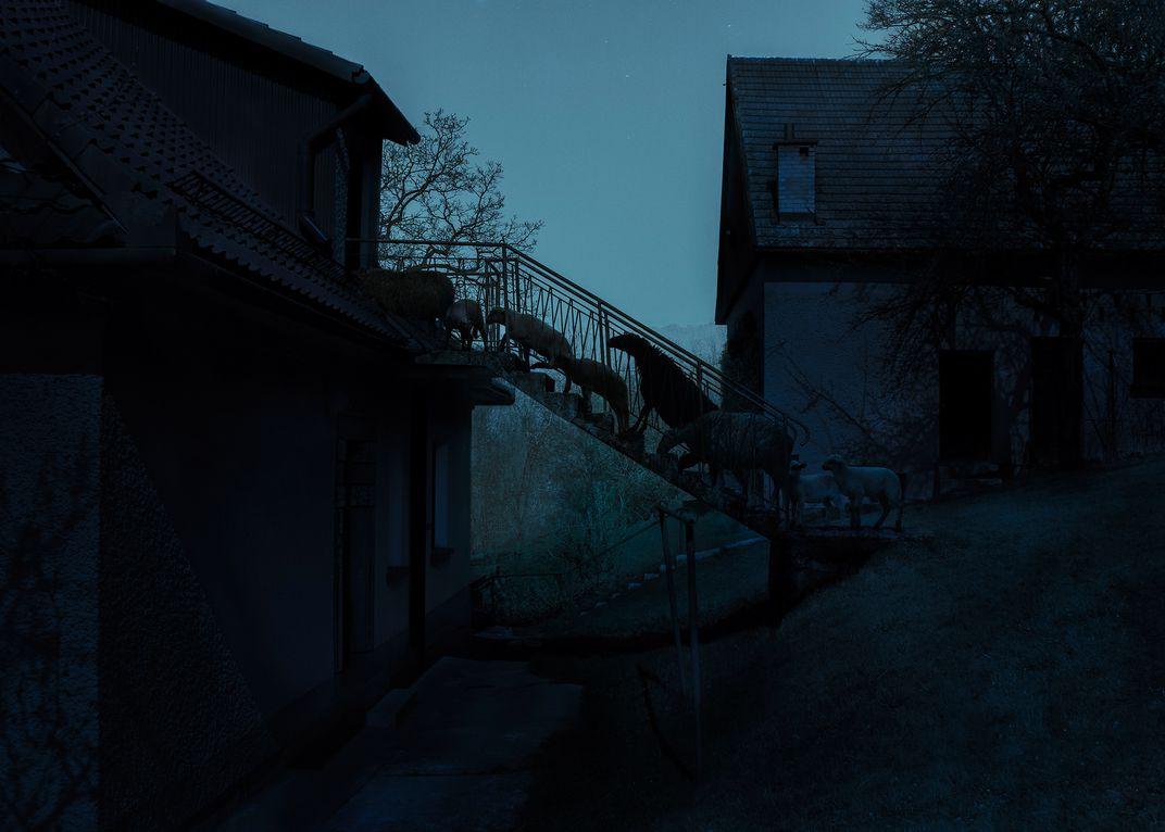 Лестница, © Адам Задло / Adam Żądło, Победитель категории «Фотомонтаж», Фотоконкурс Smithsonian