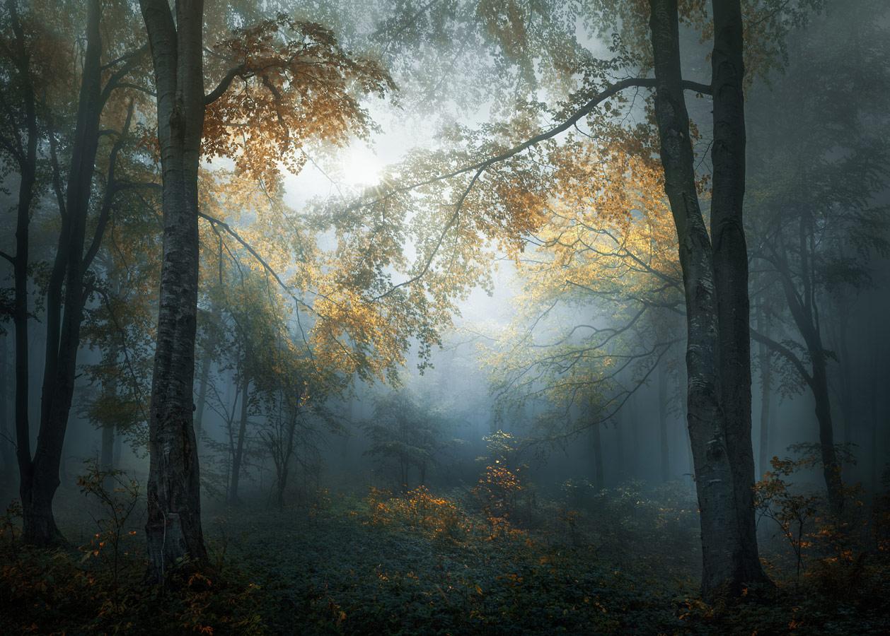 © Веселин Атанасов, Болгария, Победитель категории «Пейзажи», открытый конкурс, Sony World Photography Awards