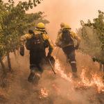 В огне: за гранью, © Джастин Салливан, ЮАР, 2-е место : Моя планета : Серии, Конкурс фотожурналистики имени Андрея Стенина