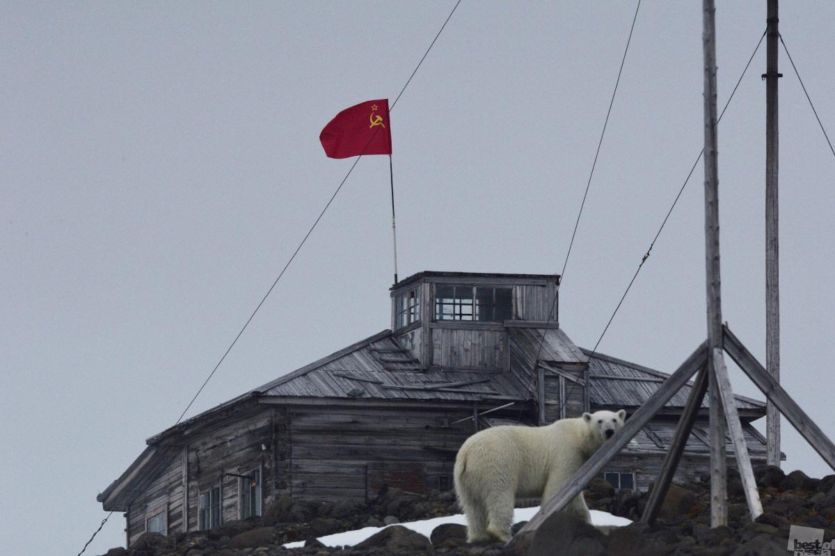 Арктический юбилей, © Вера Костамо / Архангельск, Фотоконкурс The Best of Russia 2017