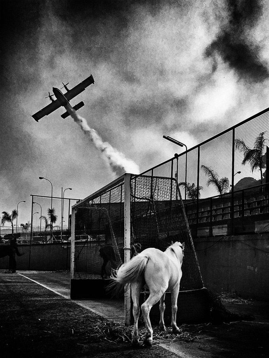 Тема: Чёрно-белое, декабрь 2017, © Симона Бонанно, Фотоконкурс «Независимый фотограф» — The Independent Photographer
