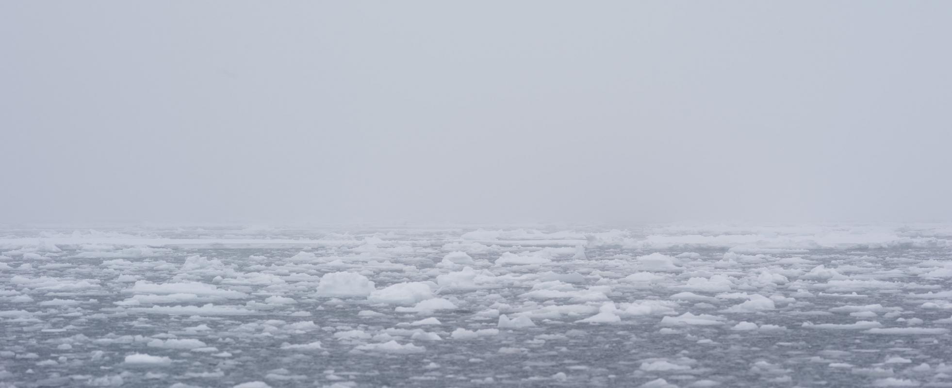 Дыхание льда, © Джули Стивенсон, Австралия, 1-е место в категории «Подвижные изображения», любитель, Токийский международный фотоконкурс 2018 — TIFA