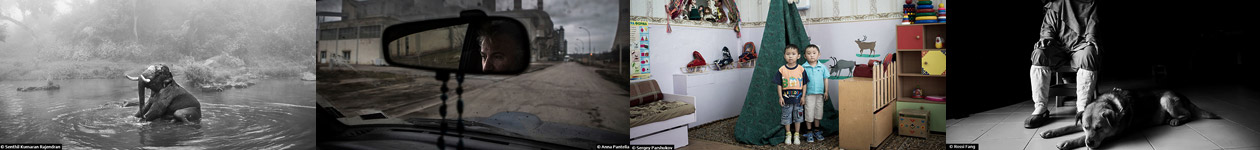 Стипендия в области фотографии Тимоти Аллена