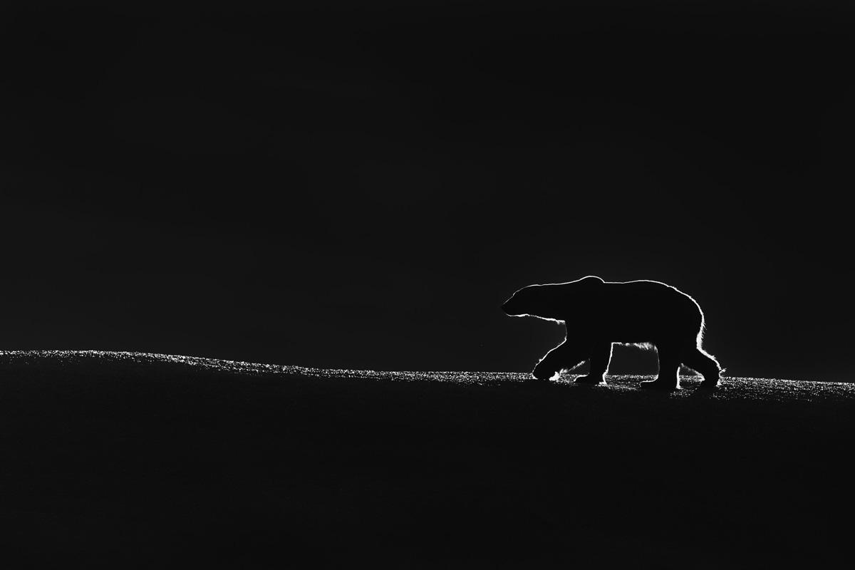 © Талал Аль-Рабах - Кувейт