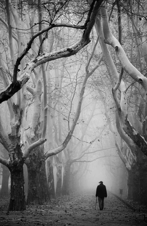 © Анна Немец - Польша