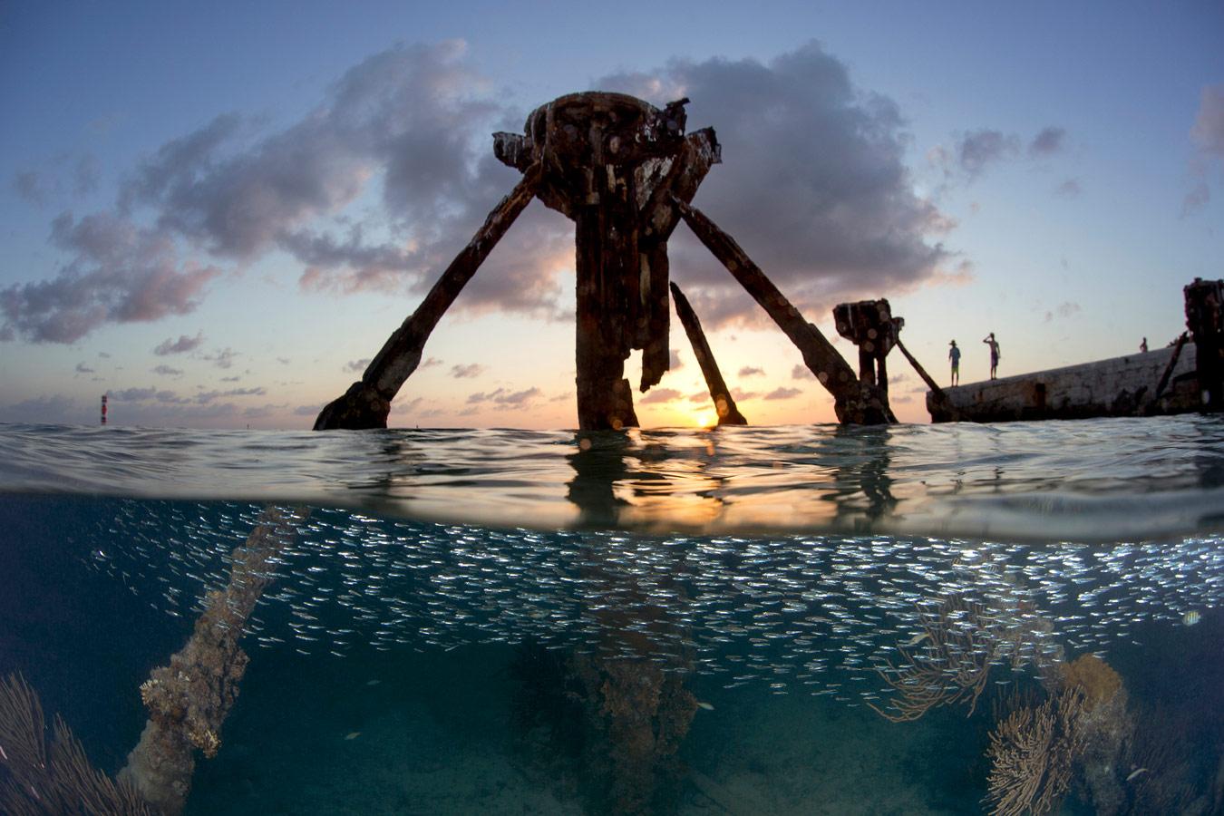 Мечта, © Кати Данса Галли, Форт-Майерс, США, Финалист категории «Подводная» : любитель, Фотоконкурс «Великие просторы» — пейзажи и живая природа — The Great Outdoors