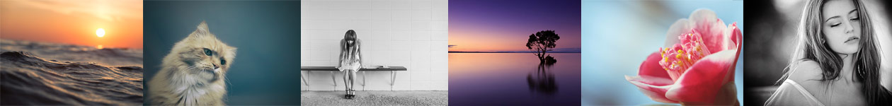 Фотоконкурс «Правило третей» - ViewBug