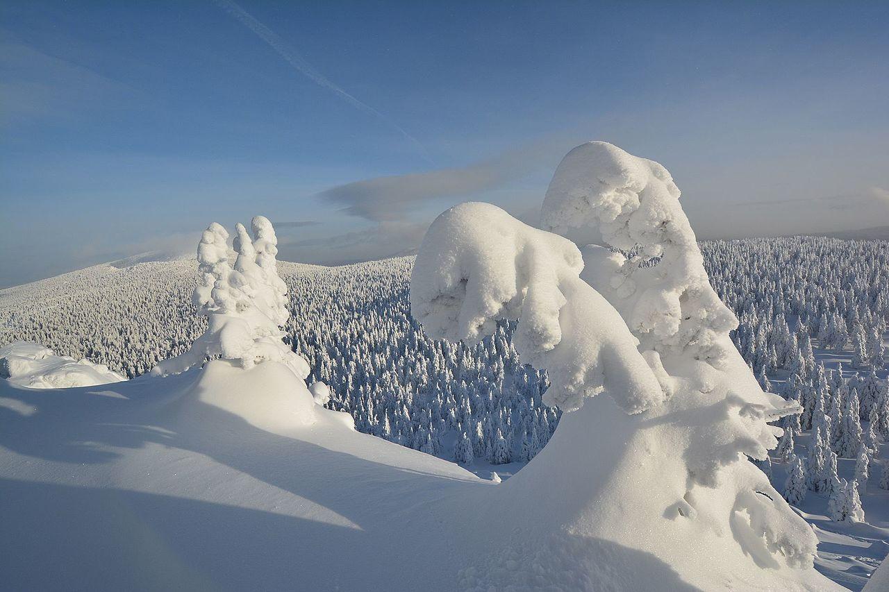 На Откликном Гребне, Южный Урал, Челябинская область, © Анатолий Козлов, Фотоконкурс «Вики любит Землю»