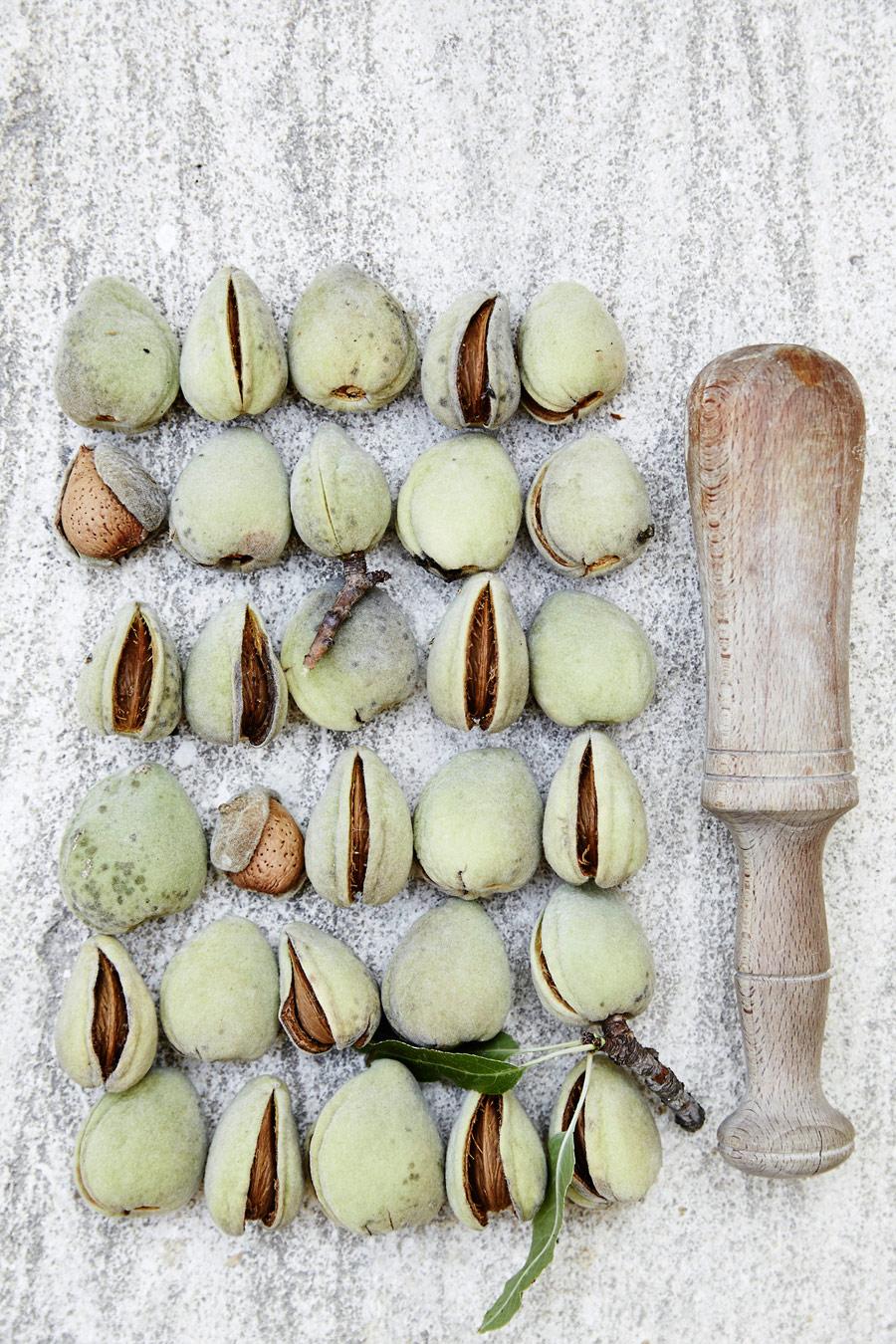 Миндаль, © Андерс Шеннеманн, Копенгаген, Дания, Первое место в категории «Редакционная» : профессионал, Конкурс фотографий еды «Вкус» — Taste