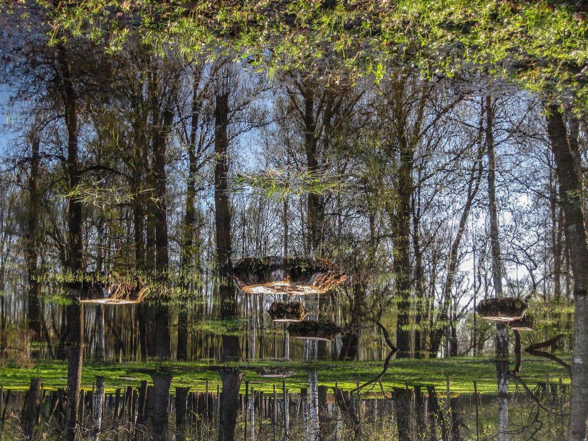 Наводнение ранней весной, © Виктория Шпаковская, Фотоконкурс «Погодный фотограф года» — Weather Photographer of the Year