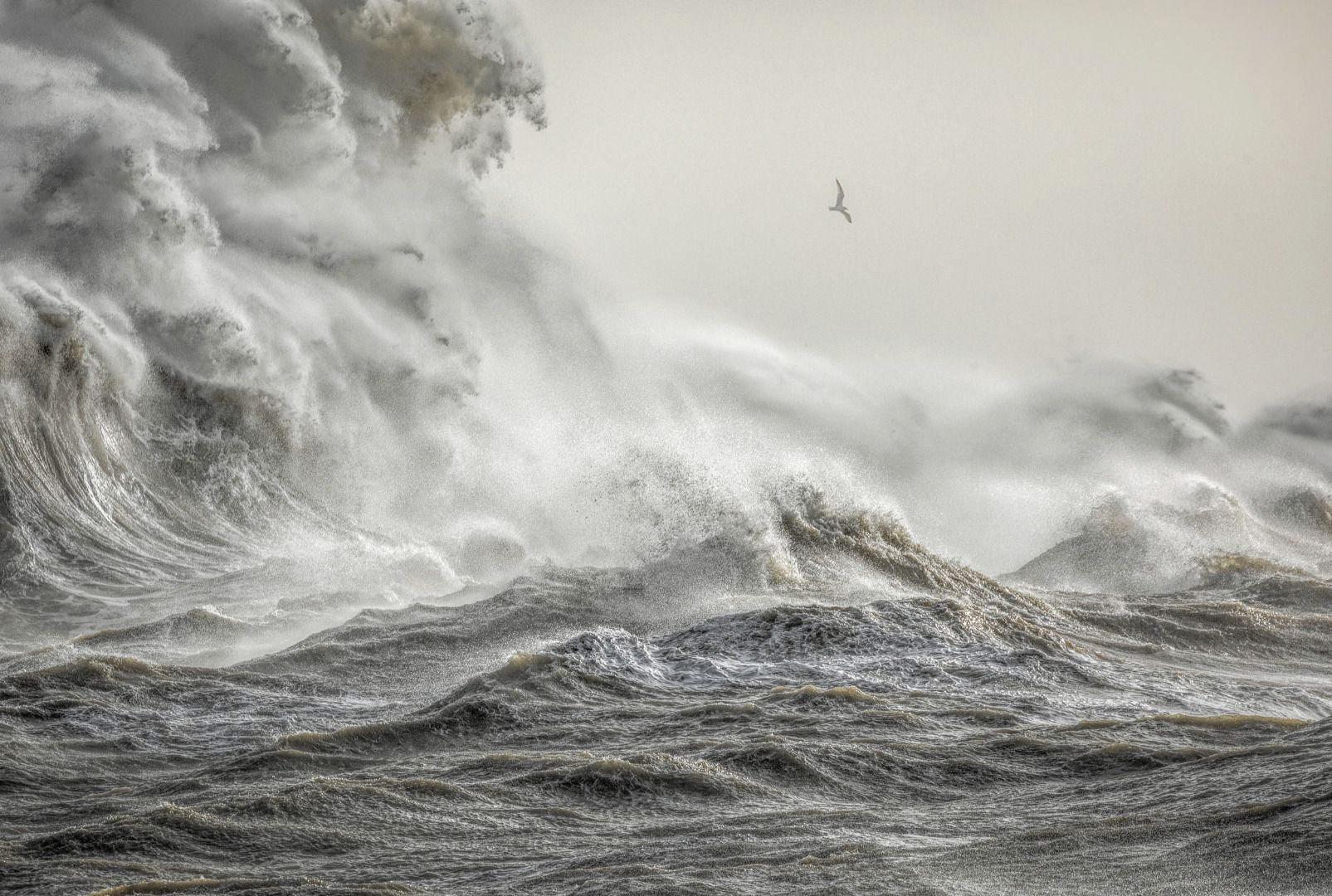 Гнев Элеоноры, © Билл Брукс, Фотоконкурс «Погодный фотограф года» — Weather Photographer of the Year