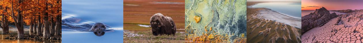Российский национальный фотоконкурс «Вики любит Землю»