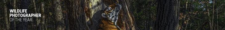 Конкурс «Фотограф дикой природы года» — Wildlife Photographer of the Year
