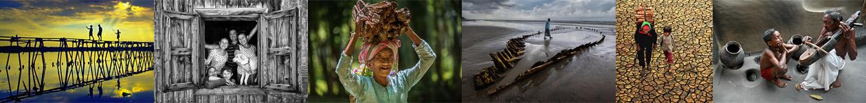 Фотоконкурс «Изменения в культуре дерева»