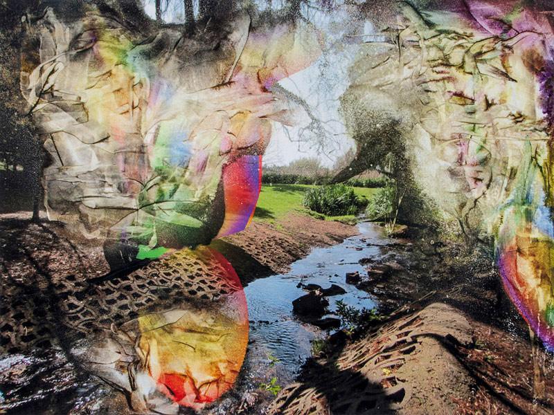 Йоханнесбургский ботанический сад, © Брэндон Джейкоб Хадсон, Фотопечать на акриле, Фотопремия «Работающий художник» — Working Artist