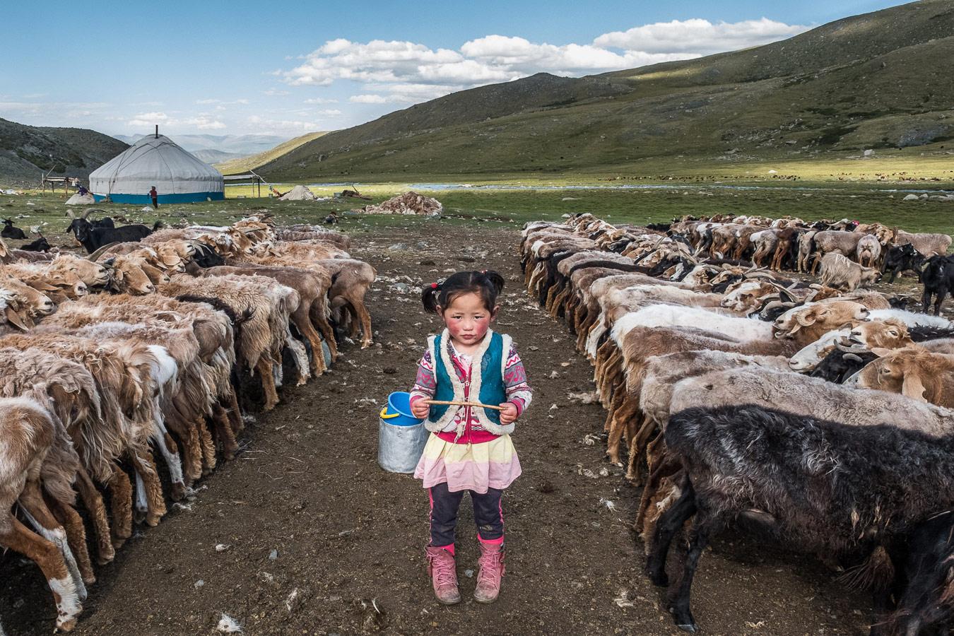 Среди овец, © Франц Леклерк, Чикаго, США, Финалист категории «Портреты в путешествии», любитель, Фотоконкурс экстремальных путешествий «Мир в фокусе» — World In Focus