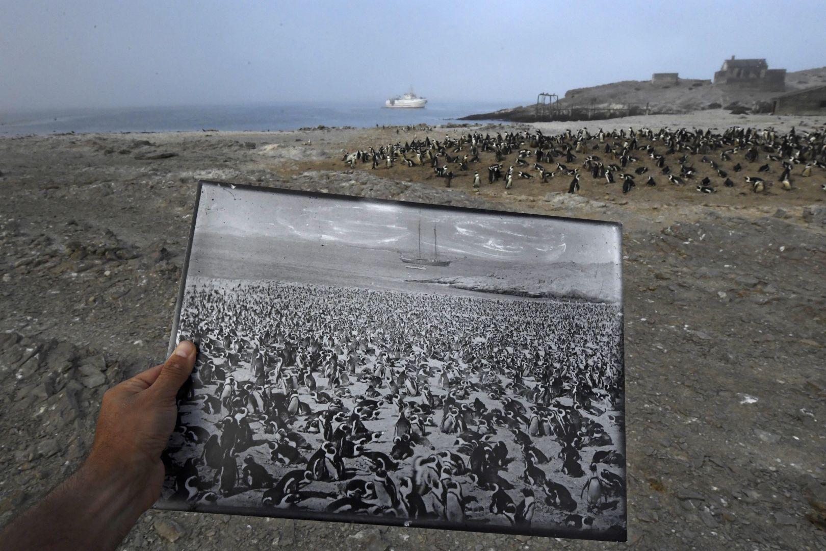 Назад в прошлое, © Томас П. Песчак, Германия / Южная Африка, 3-й приз : одиночный кадр, Фотоконкурс World Press Photo
