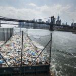 Пустошь, © Кадир ван Лохуйзен, Нидерланды, 1-й приз : серия, Фотоконкурс World Press Photo