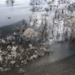 Амазонка: угроза Раю, © Даниэль Белтра, США, 3-й приз : серия, Фотоконкурс World Press Photo