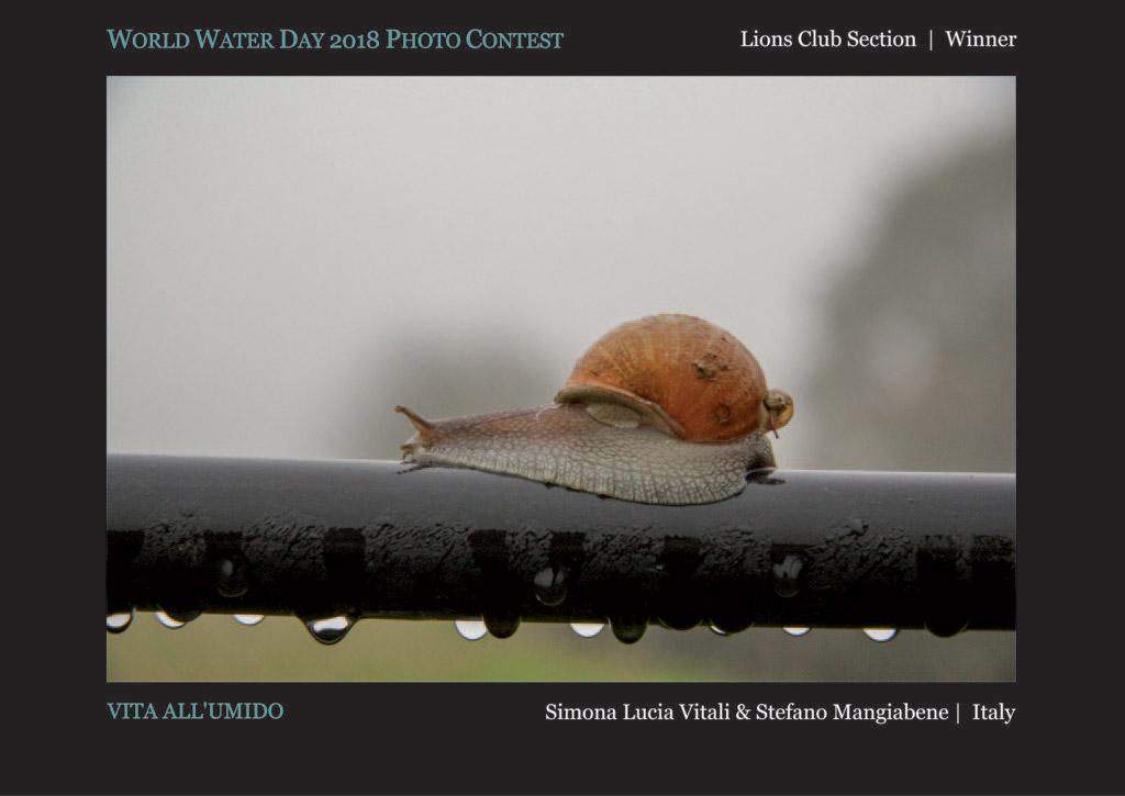 Влажная жизнь, © Симона Люсия Виталий и © Стефано Мангиабене, Победитель раздела Lions Club, Фотоконкурс Всемирного дня воды — World Water Day