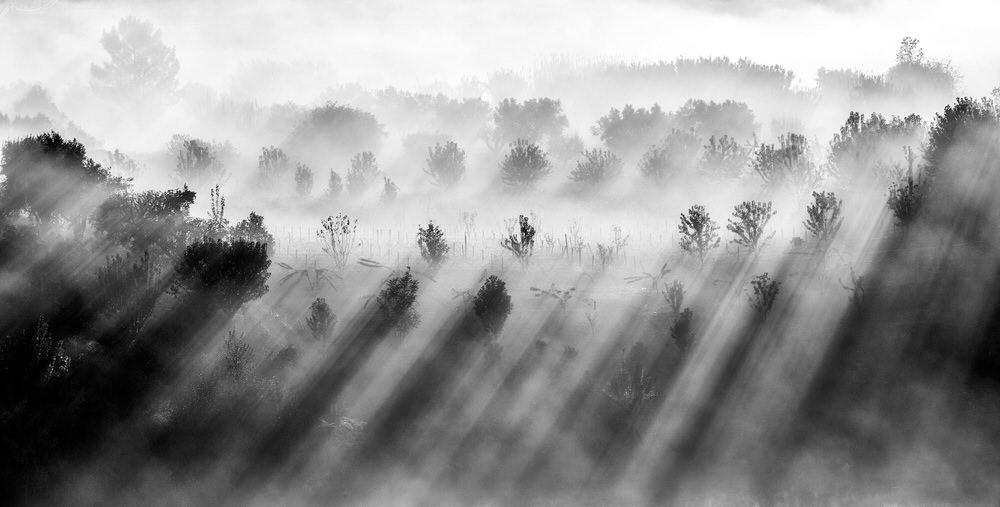Ранг #10 (34 балла), © Адольфо Энрикес, Сантьяго-де-Компостела, Испания, Фотоконкурс «Топ–10 мировых фотографов в Чёрно-белом» — World's Top 10 Black & White Photographers