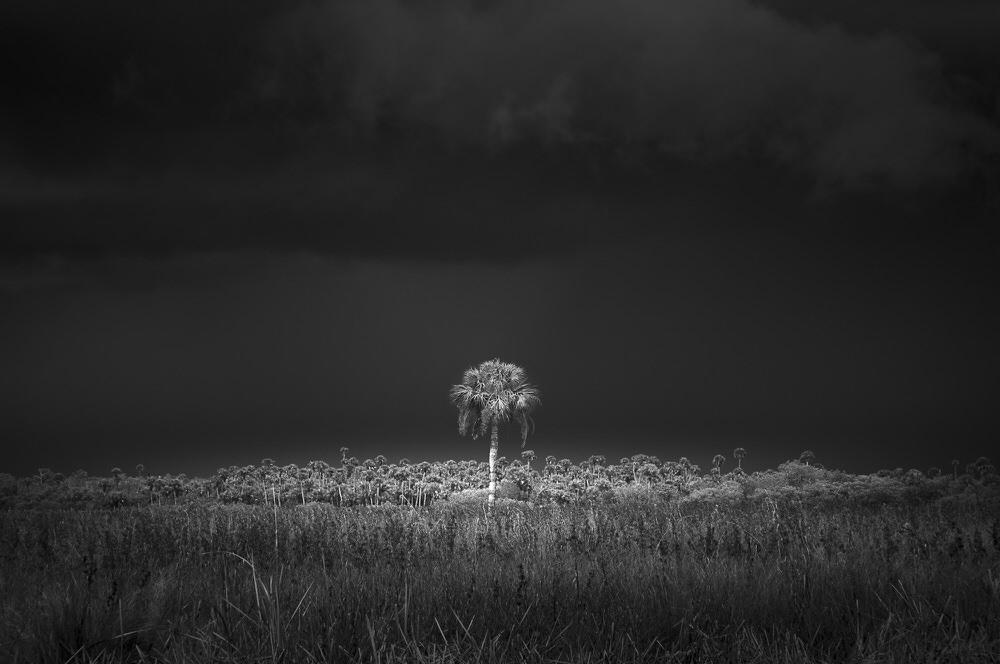 Ранг #2 (70 баллов), © Джек Карран, Сент-Луис, США, Фотоконкурс «Топ–10 мировых фотографов в Чёрно-белом» — World's Top 10 Black & White Photographers