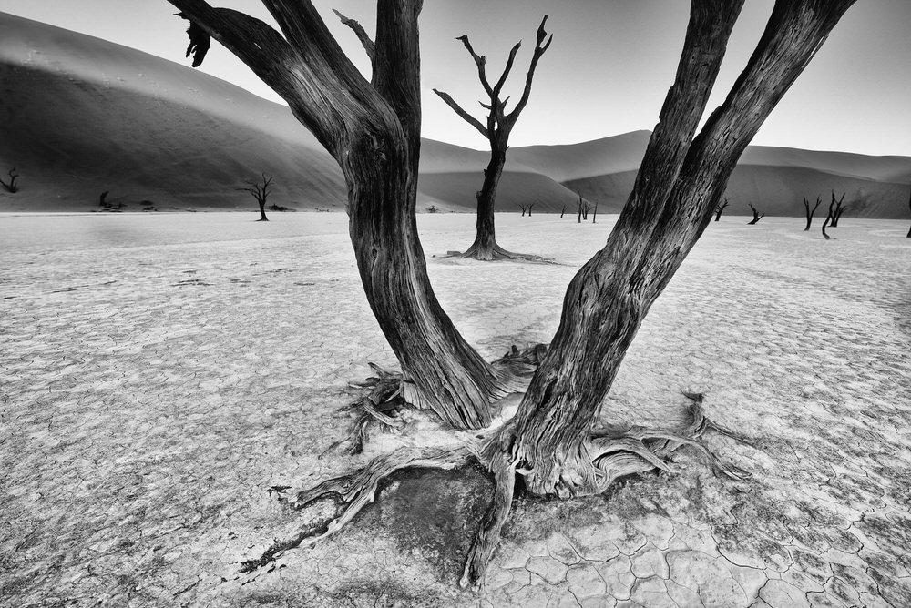 Ранг #3 (57 баллов), © Тревор Коул, Данфанахи, Ирландия, Фотоконкурс «Топ–10 мировых фотографов в Чёрно-белом» — World's Top 10 Black & White Photographers