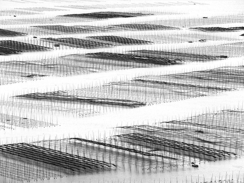 Ранг #4 (54 балла), © Тьерри Борниер, Куньмин, Китай, Фотоконкурс «Топ–10 мировых фотографов в Чёрно-белом» — World's Top 10 Black & White Photographers