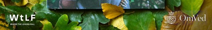 Фотоконкурс журнала Where the Leaves Fall