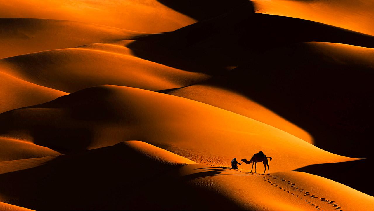 Золотые дюны, © Самах Аль Хуффаш, Объединенные Арабские Эмираты, Победитель, Международный фотоконкурс Xposure