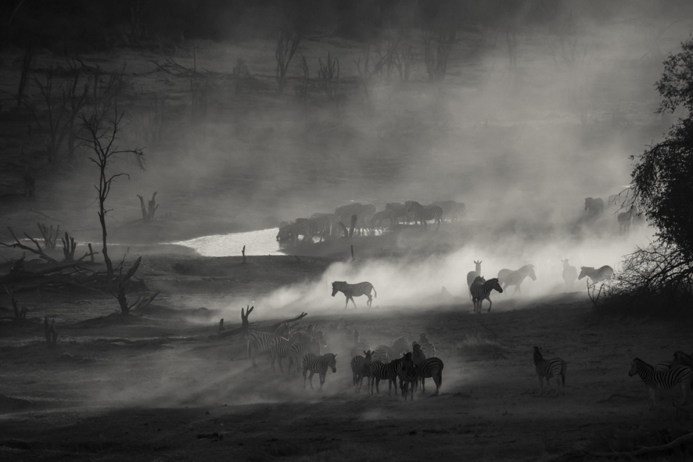 Оттенки в пустыне, © Даниэль ДУГМОР, 3-е место в категории «Пейзаж и природа», профессионал, Фотоконкурс «Зебра» — Zebra — Чёрно-белый фотограф года
