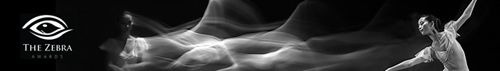 Фотоконкурс «Зебра» — Чёрно-белый фотограф года