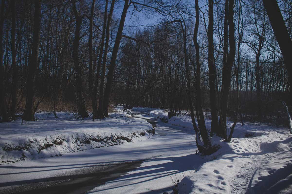 Номинация «Пейзаж» - Носкова Полина, «Речка в лесопарке Измайлово»